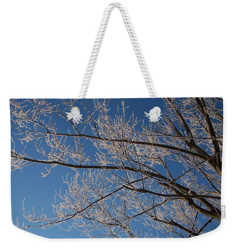 Branches Weekender Tote Bag featuring the photograph Ice Storm Branches by Michelle Miron-Rebbe