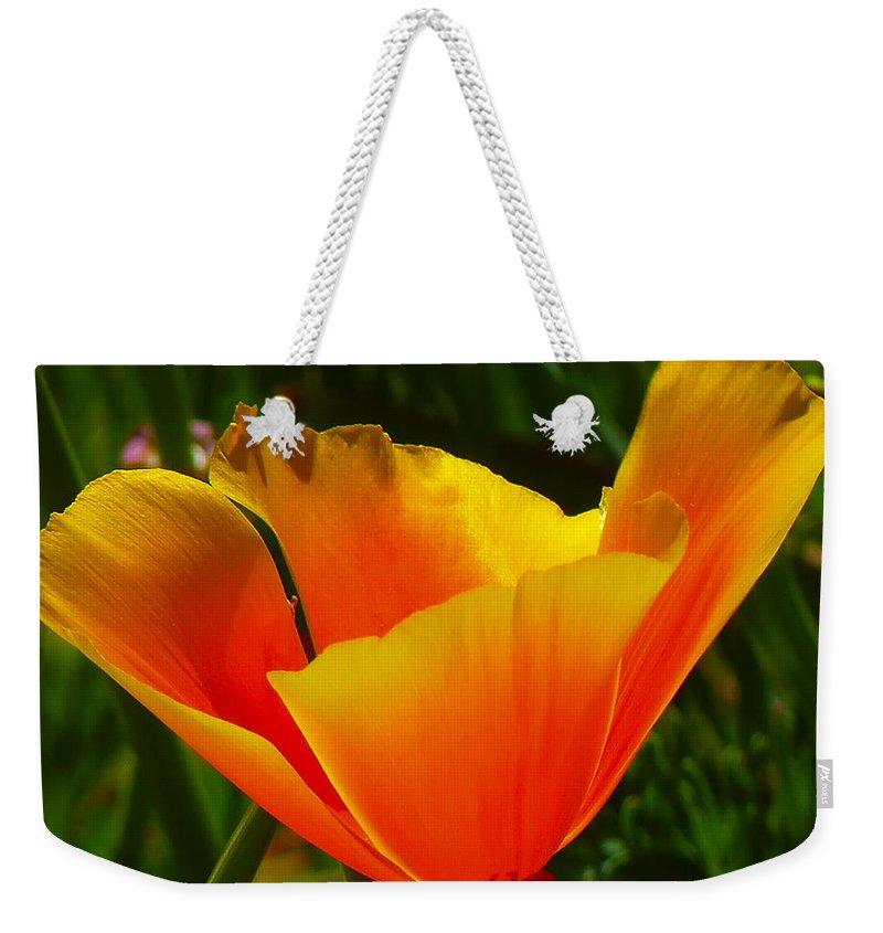 Iceland Poppy Weekender Tote Bag featuring the photograph Iceland Poppy by Ingrid Smith-Johnsen
