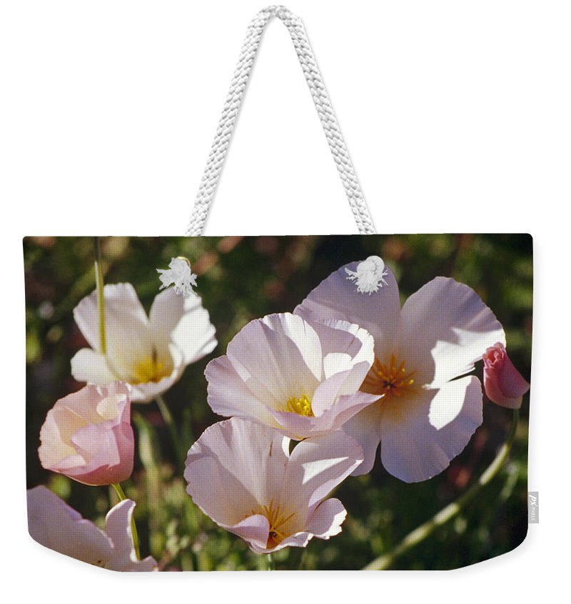 Flowers Weekender Tote Bag featuring the photograph Icelandic Poppies by Kathy McClure