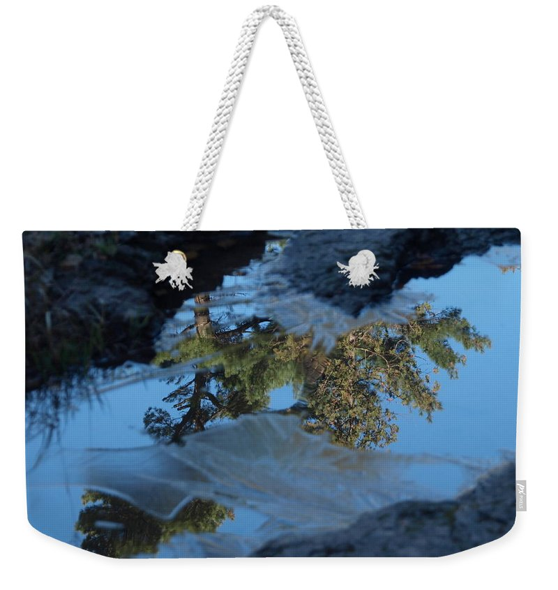 Jim Weekender Tote Bag featuring the photograph Icy Evergreen Reflection by James Peterson