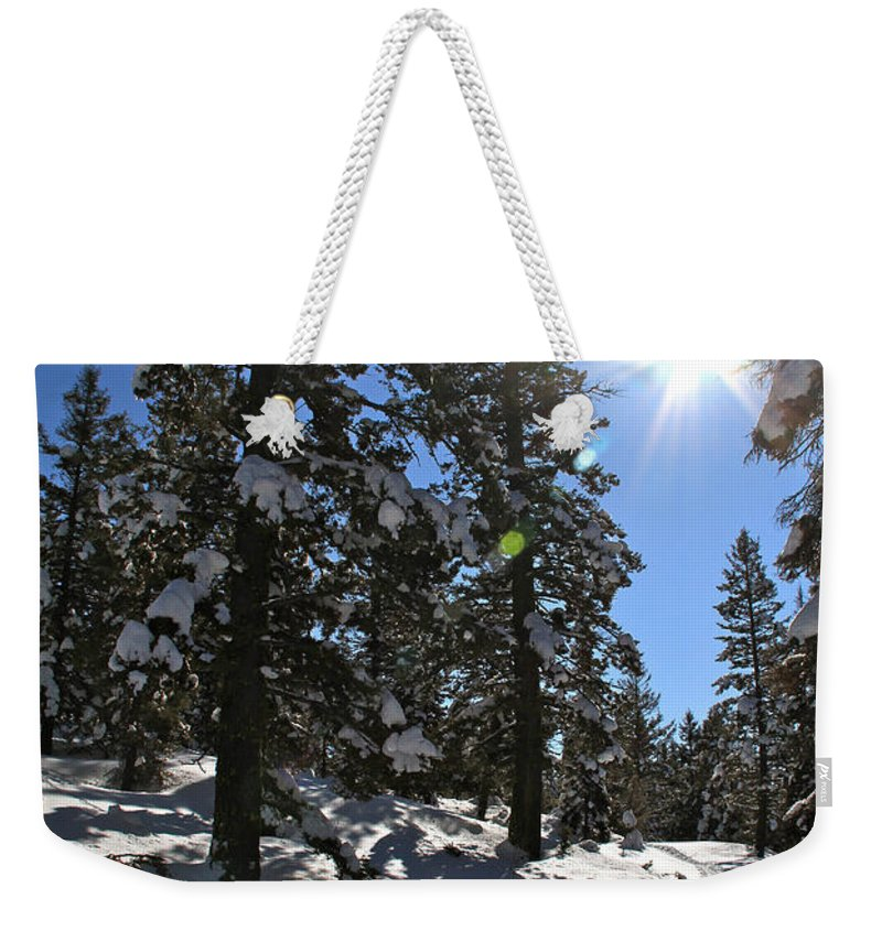 Idaho Weekender Tote Bag featuring the photograph Idaho Blue Bird Day by Ed Riche
