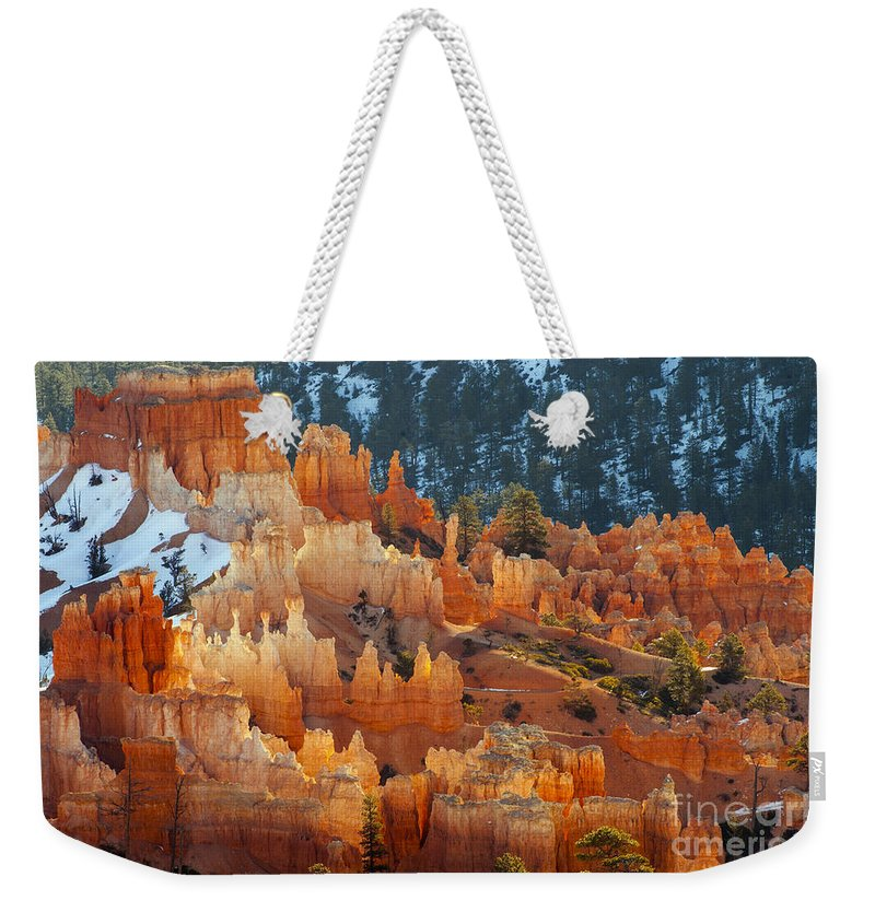 Bryce Canyon National Park Utah Parks Fairy Chimney Chimneys Toadstool Toadstools Hoodoo Hoodoos Red Rock Formation Formations Snow Tree Trees Canyons Landscape Landscapes Snowscape Snowscapes  Weekender Tote Bag featuring the photograph Illuminated by Bob Phillips