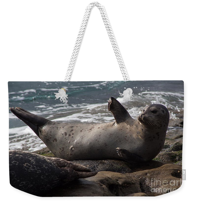 Sea Lion Weekender Tote Bag featuring the photograph I'm Over Here by Darleen Stry