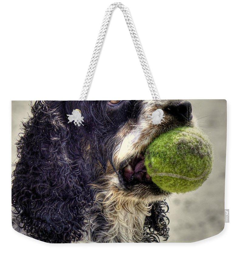 Cocker Spaniel Photographs Weekender Tote Bags