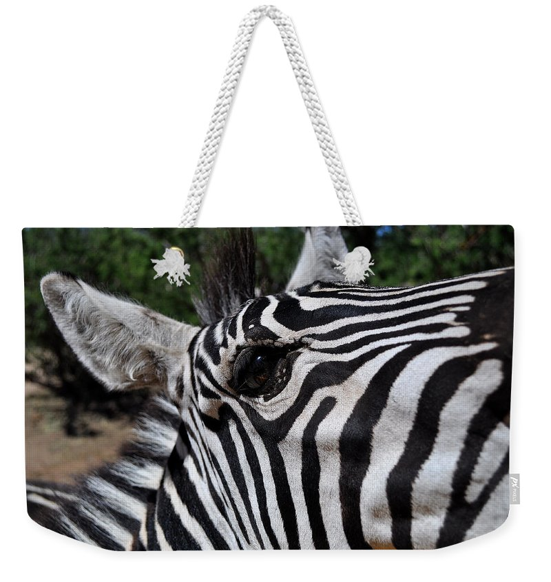 Zebra Weekender Tote Bag featuring the photograph I'm Watching You by Thomas Shockey