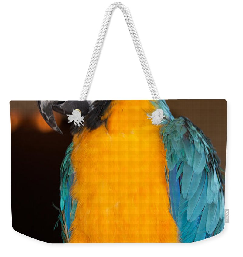 Parrot Weekender Tote Bag featuring the photograph Img B67 by Steve Herndon