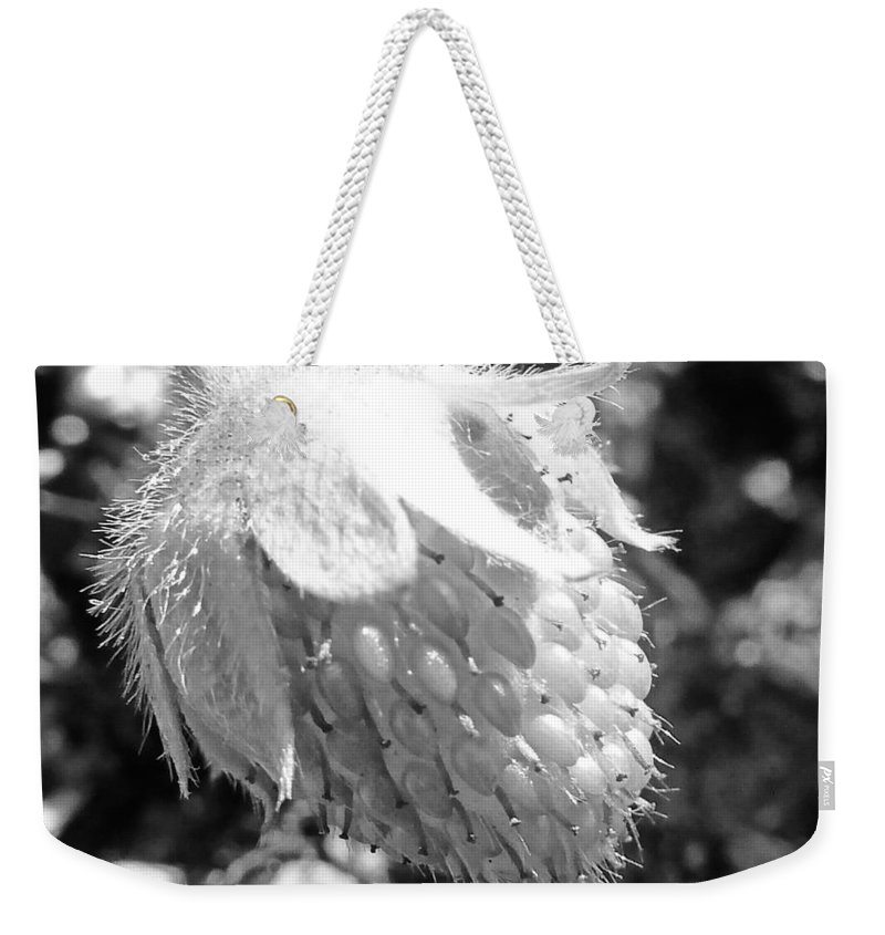 Black And White Weekender Tote Bag featuring the photograph Immature by Steve Taylor