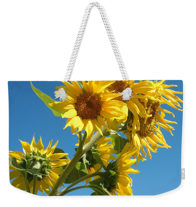 Sun Weekender Tote Bag featuring the photograph In All Their Glory by Jerry McElroy