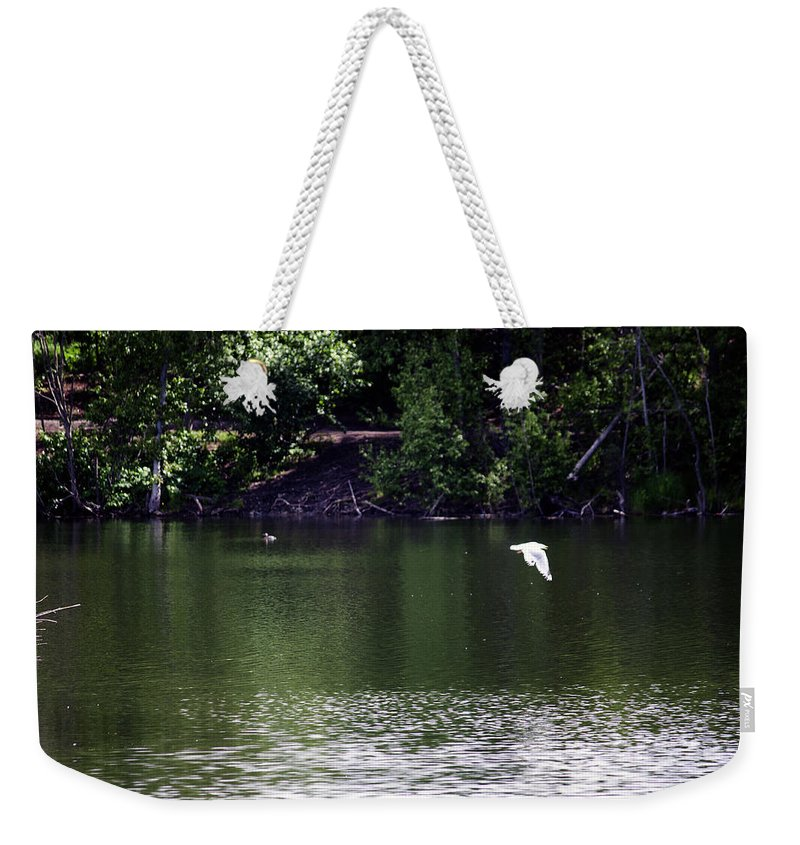 Birds Weekender Tote Bag featuring the photograph In Flight by Edward Hawkins II