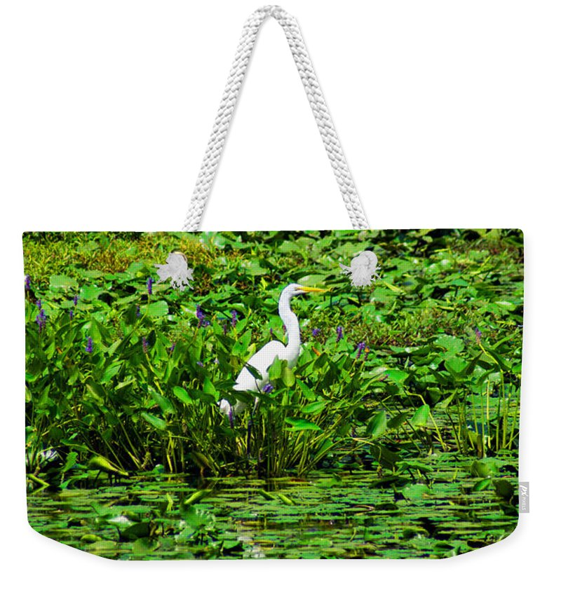 Egret Weekender Tote Bag featuring the photograph In Plain Sight by Joe Geraci