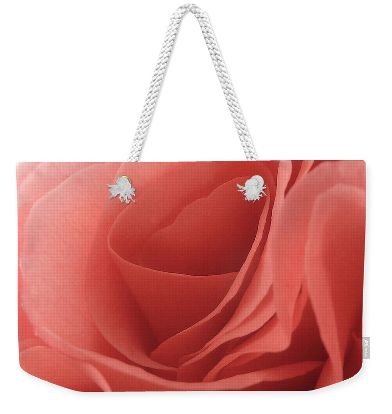Valentine Weekender Tote Bag featuring the photograph In Preparation For My Valentine by Steve Taylor
