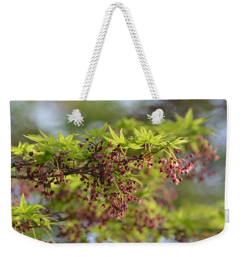 In The First Light Weekender Tote Bag featuring the photograph In The First Light by Maria Urso