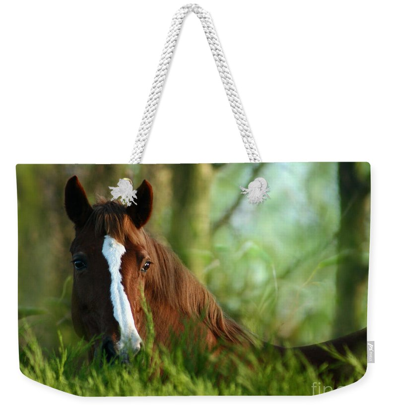 Horse Weekender Tote Bag featuring the photograph In The Green by Angel Ciesniarska