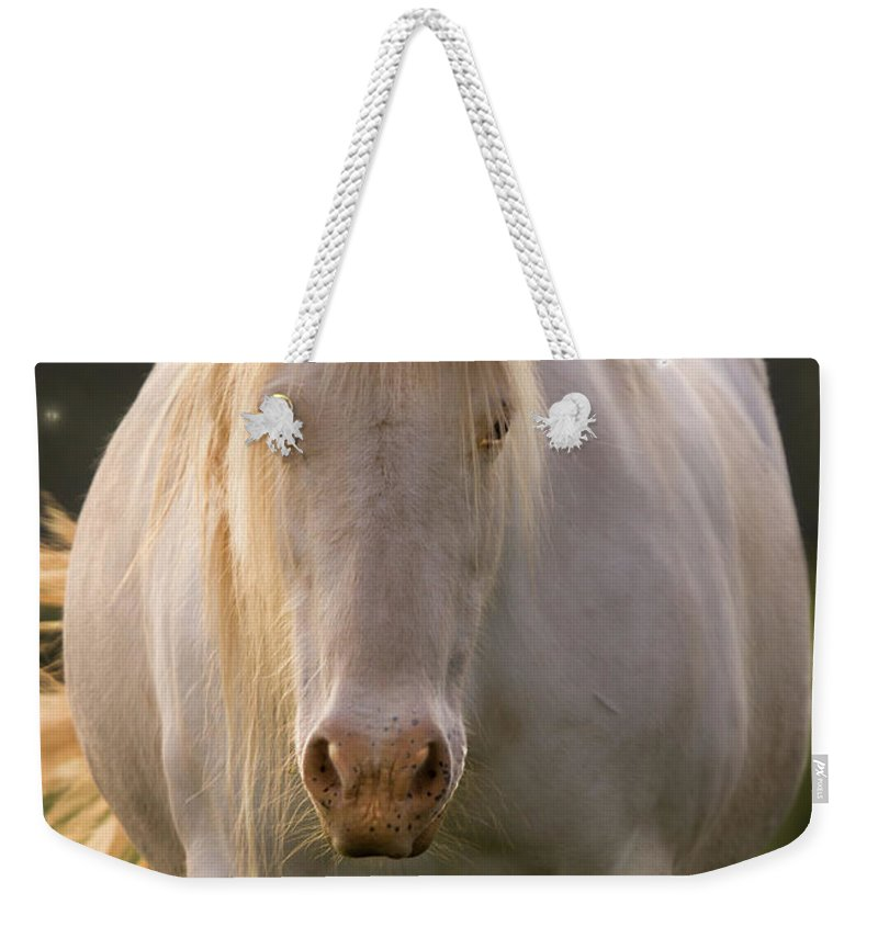 Unicorn Weekender Tote Bag featuring the photograph In The Land Of Unicorns by Angel Ciesniarska