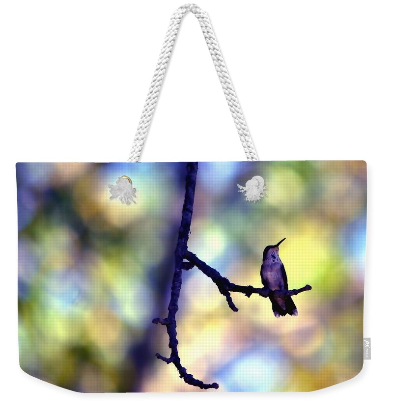 Bird Weekender Tote Bag featuring the photograph In The Last Of The Light by Deena Stoddard