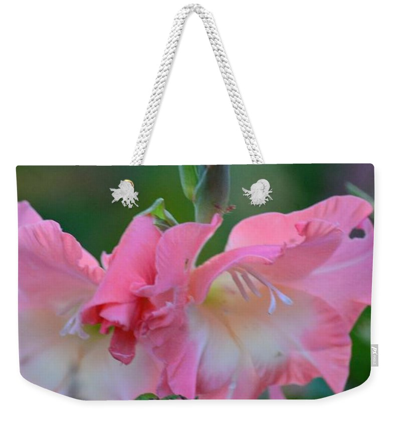 In The Midst Of Hydrangeas Weekender Tote Bag featuring the photograph In The Midst Of Hydrangeas by Maria Urso