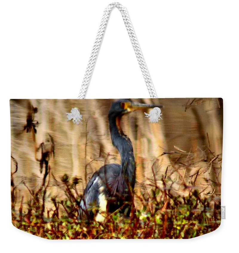 Reflection Weekender Tote Bag featuring the photograph In The Water - Reflection by Travis Truelove
