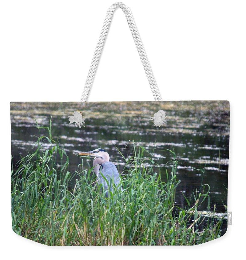 Michigan Weekender Tote Bag featuring the photograph In The Weeds by Linda Kerkau