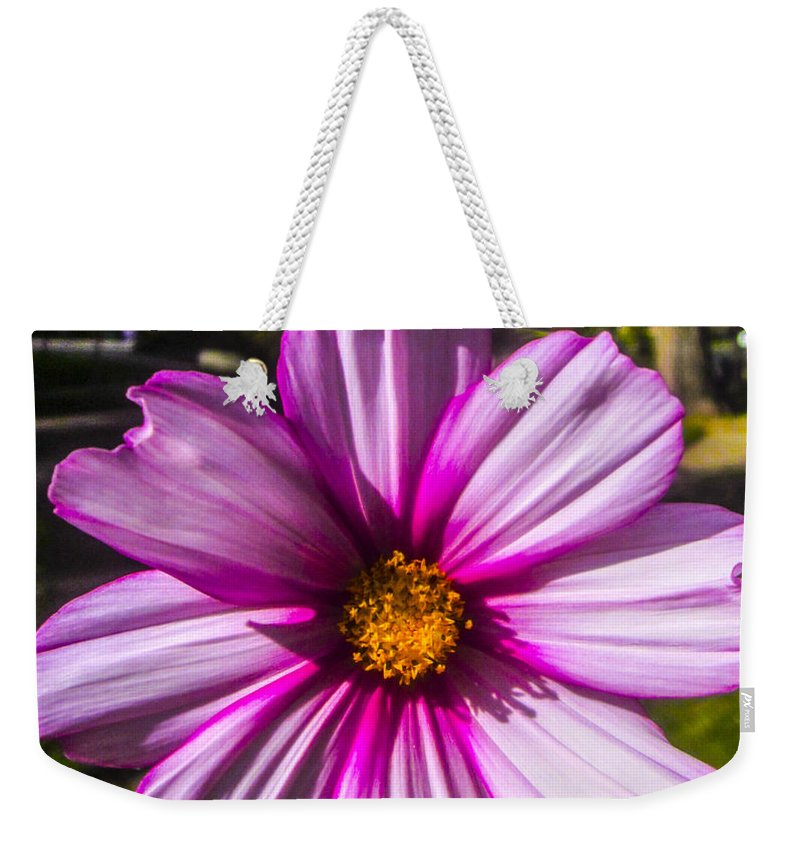 Outdoors Weekender Tote Bag featuring the photograph In Your Face by Angus Hooper Iii
