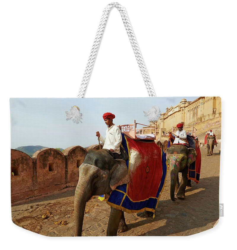 Working Animal Weekender Tote Bag featuring the photograph India, Rajasthan, Jaipur The Pink City by Tuul & Bruno Morandi