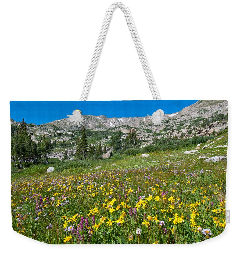 Wildflower Weekender Tote Bag featuring the photograph Indian Peaks Wildflower Meadow by Cascade Colors
