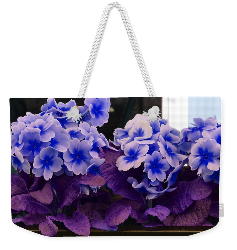 Park Weekender Tote Bag featuring the photograph Indigo Flowers by Holly Blunkall