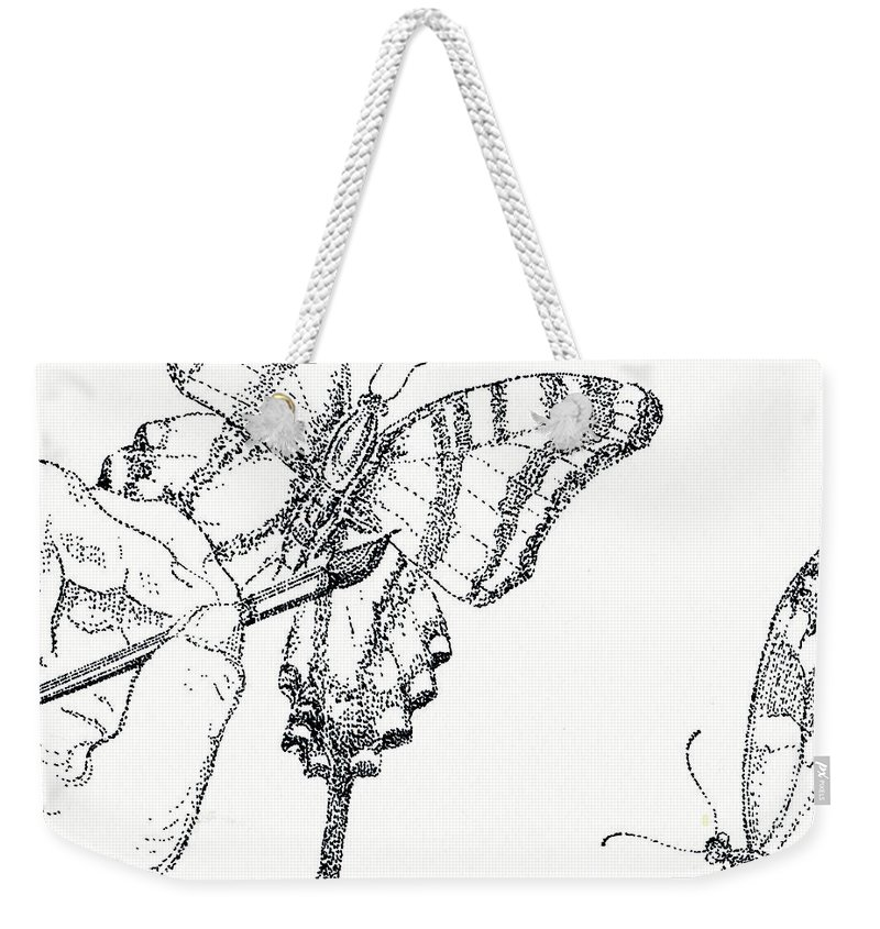 Drawing Weekender Tote Bag featuring the drawing Inked Swallowtail by Lizi Beard-Ward