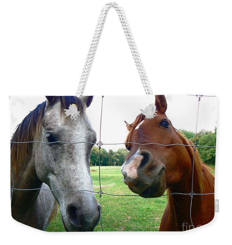 Arabian Horses Weekender Tote Bag featuring the photograph Inquisitive Arabians by Dona Dugay