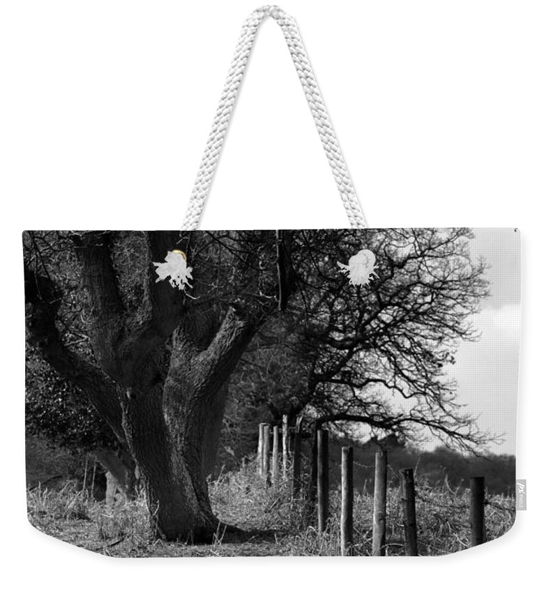 Inside Or Out Weekender Tote Bag featuring the photograph Inside Or Out by Wendy Wilton
