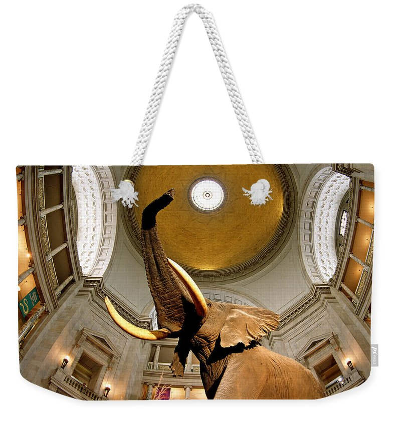 Photography Weekender Tote Bag featuring the photograph Interiors Of A Museum, National Museum by Panoramic Images