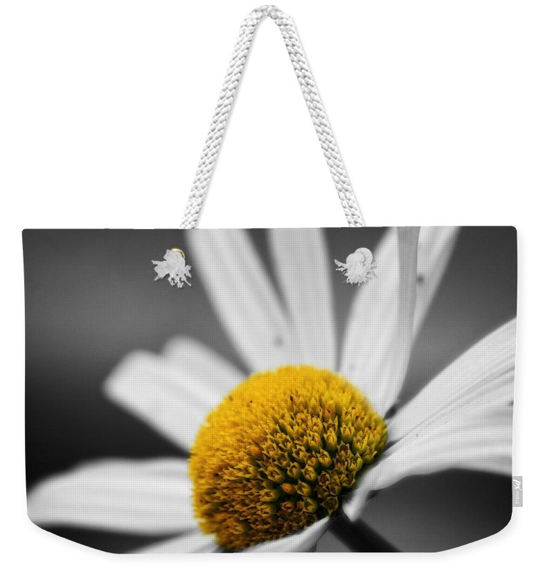Intimate Daisy Weekender Tote Bag featuring the photograph Intimate Daisy by Dan Sproul
