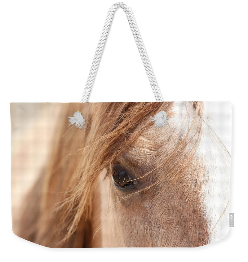 Horses Weekender Tote Bag featuring the photograph Into My Soul by Athena Mckinzie