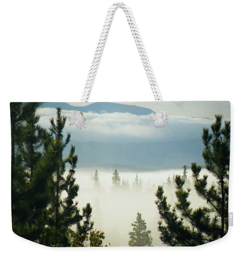 Pine Weekender Tote Bag featuring the photograph Into The Day by Brian Boyle