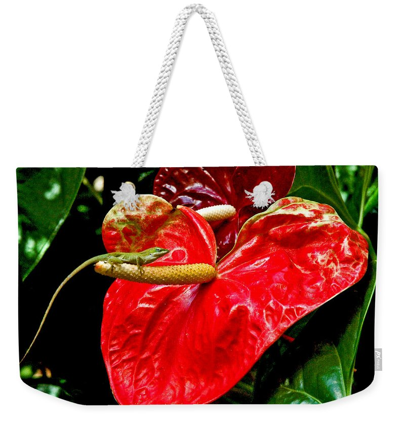 Anthurium Weekender Tote Bag featuring the photograph Into The Heart by Norman Johnson