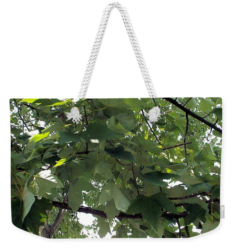 Non Duality Weekender Tote Bag featuring the photograph Into The Woods by Paula Andrea Pyle