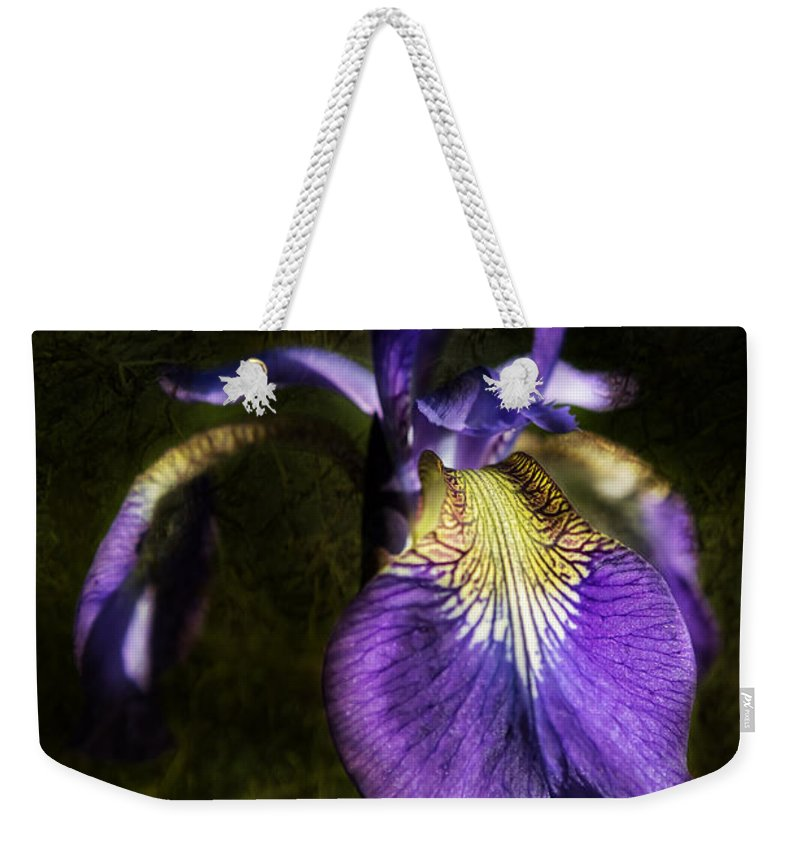 Iris Weekender Tote Bag featuring the photograph Iris Baroque by Belinda Greb