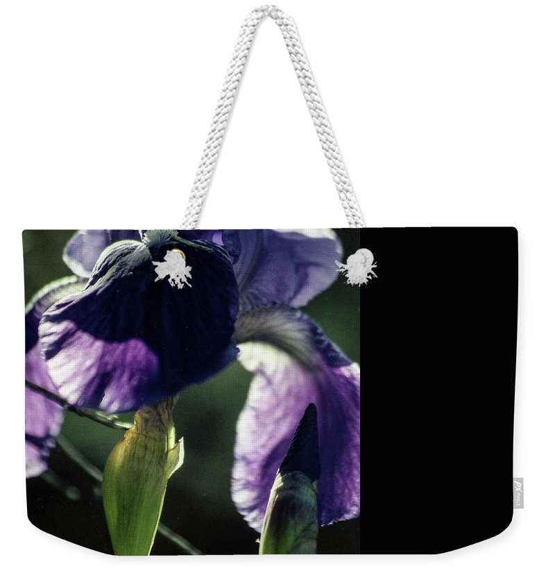 Flowers Weekender Tote Bag featuring the photograph Spring's Gift by Kathy McClure