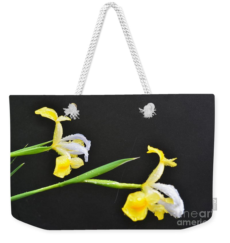 Flower Weekender Tote Bag featuring the photograph Iris by Randy J Heath