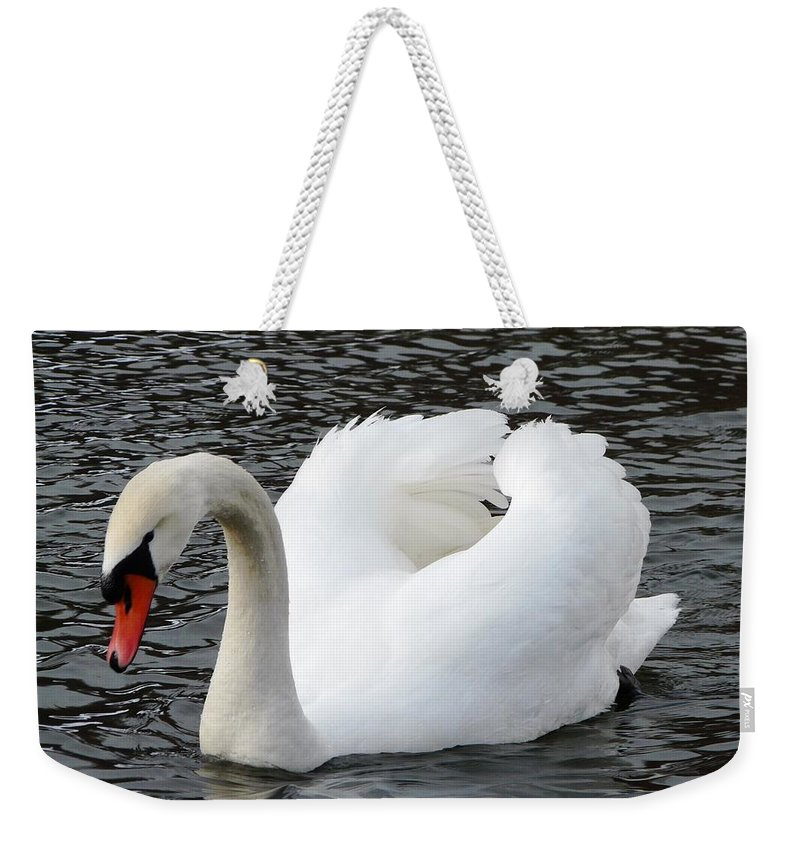 Bird Weekender Tote Bag featuring the photograph Isar Swan by Valerie Ornstein