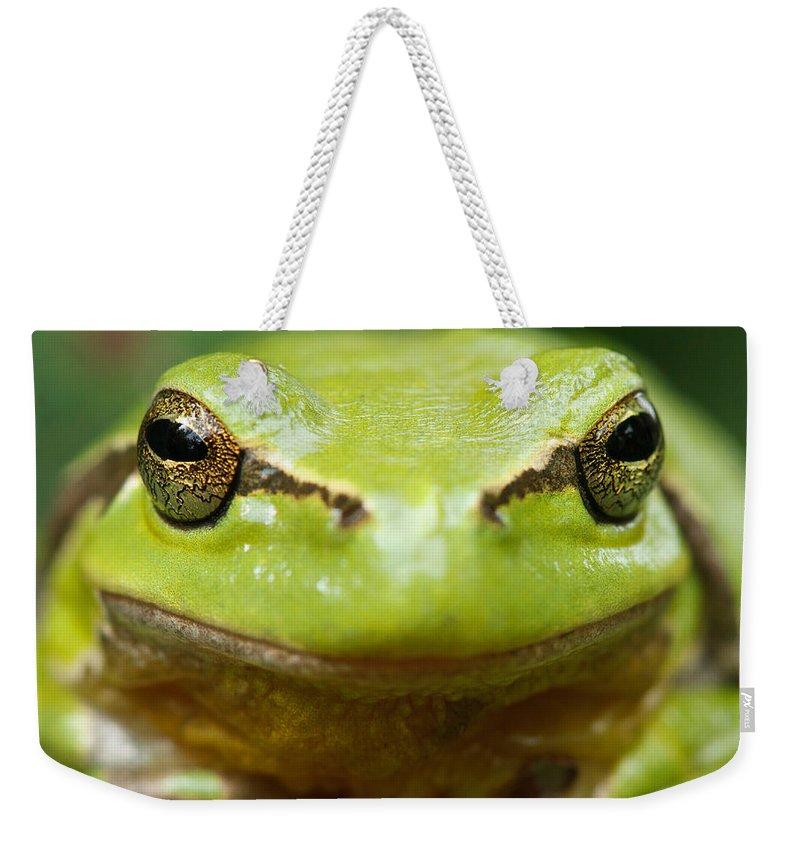 Green Tree Frogs Weekender Tote Bags