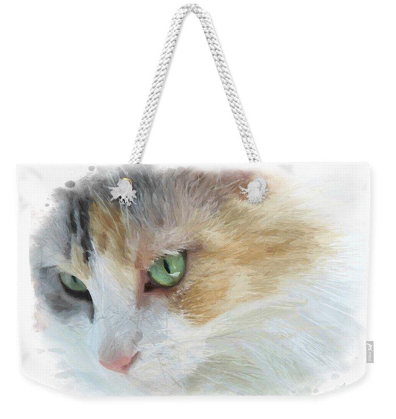 Eyes Weekender Tote Bag featuring the digital art Izzy's Eyes by Anita Hubbard