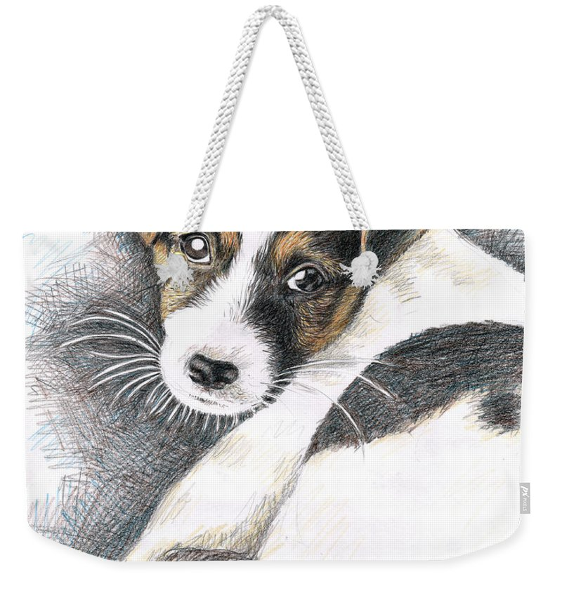 Dog Weekender Tote Bag featuring the drawing Jack Russell Puppy by Nicole Zeug