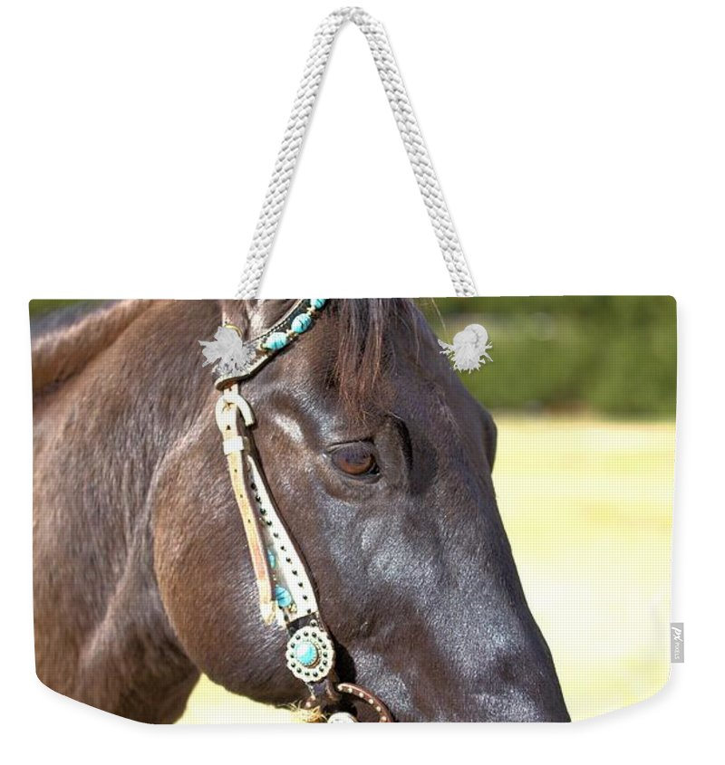 3107 Weekender Tote Bag featuring the photograph Jade by Gordon Elwell