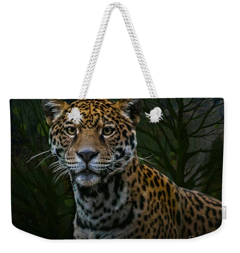Big Cats Weekender Tote Bag featuring the photograph Jaguar Two by Ken Frischkorn