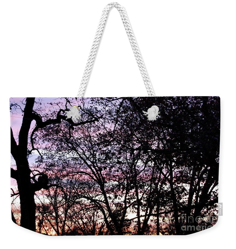Trees Weekender Tote Bag featuring the photograph Jammer Cotton Candy Trees by First Star Art