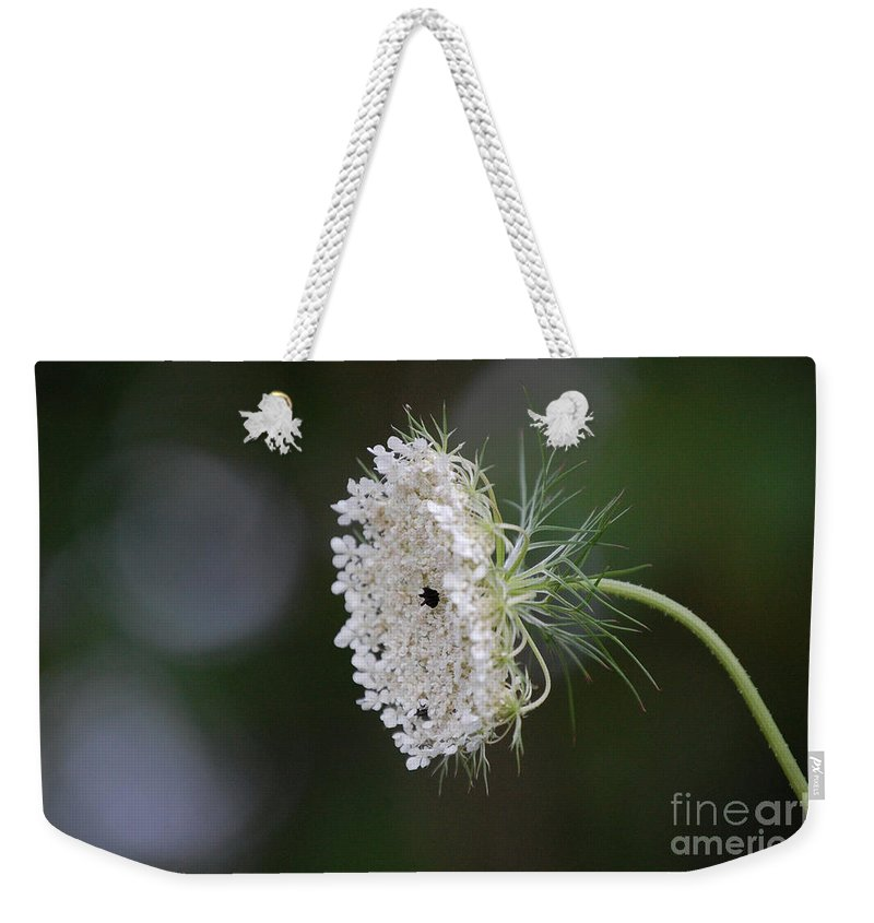First Star Art Weekender Tote Bag featuring the photograph jammer Garden Lace 2 by First Star Art