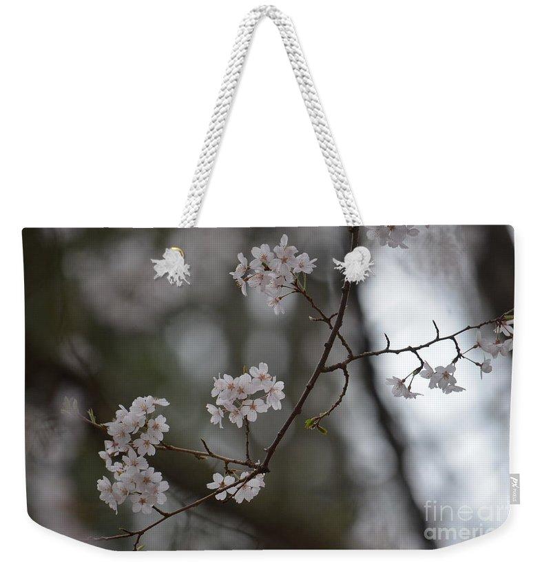Japanese Cherry Blossoms Weekender Tote Bag featuring the photograph Japanese Cherry Blossoms by Maria Urso