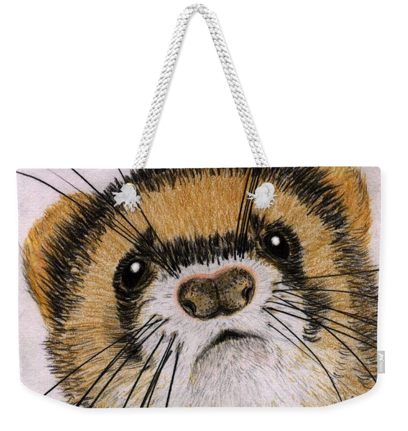 Ferret Weekender Tote Bag featuring the drawing Jasper by Barbara Moignard