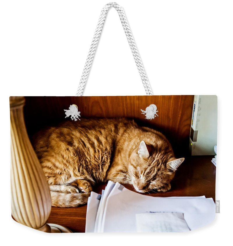 Christopher Holmes Photography Weekender Tote Bag featuring the photograph Jc Napping by Christopher Holmes
