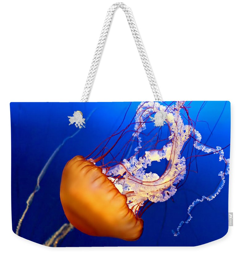 Aquarium Weekender Tote Bag featuring the photograph Jelly #2 by Nikolyn McDonald